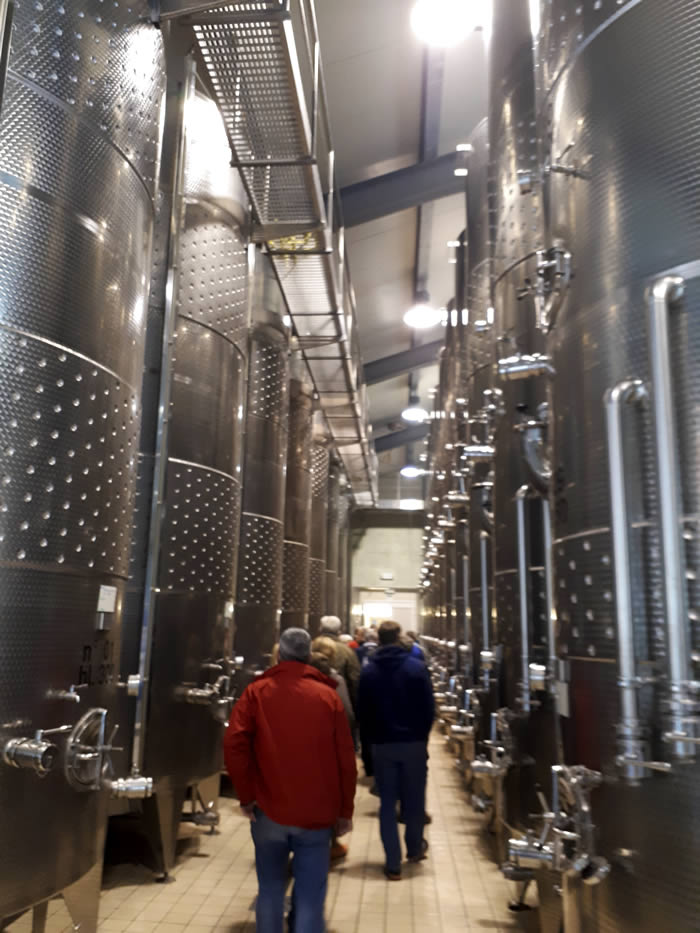 Huge stainless steel vats at Tenuta Santome